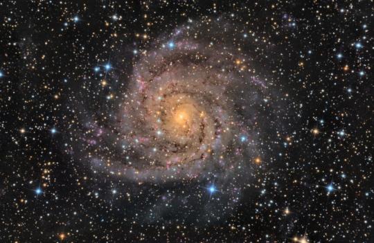 Hidden Galaxy IC 342